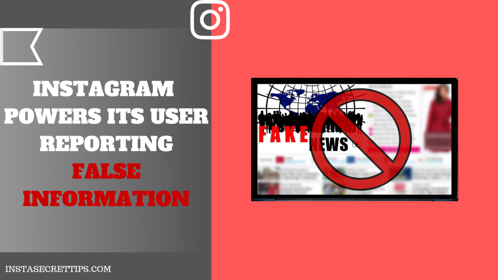 INSTAGRAM REPORTING FALSE INFORMATION